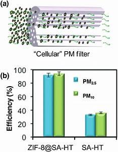 A  Schematic Illustration Of A  U0026quot Cellular U0026quot  Pm Filter   B