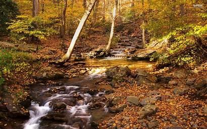 Delaware Gap Fall Water Harvest Nature Wallpapers