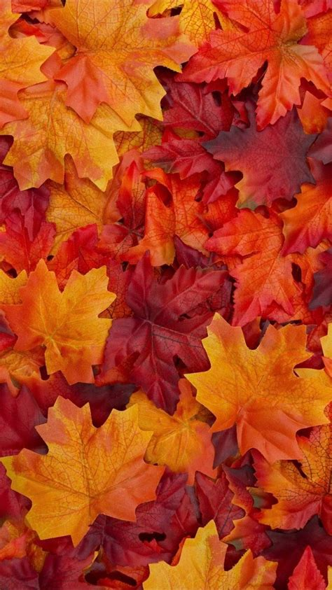 Background Aesthetic Thanksgiving Wallpaper by Fall Colors Autumn Colours In 2019 Fall Wallpaper