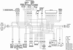 2006 Honda Trx450er Wiring Diagram : 2006 trx450r ignition wiring diagram ~ A.2002-acura-tl-radio.info Haus und Dekorationen