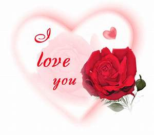 I Love You Rose Picture - DesiComments.com