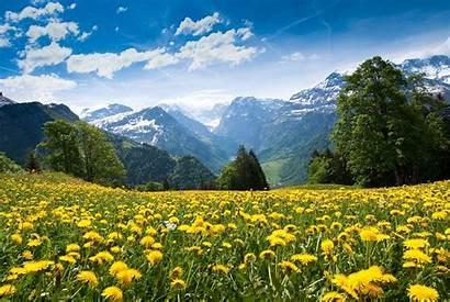 Summer Mountain Landscape Clouds Desktop Backgrounds Wallpapers
