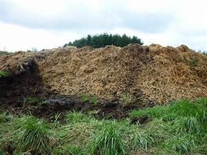Plot 5E: Collecting Horse Manure/Compost