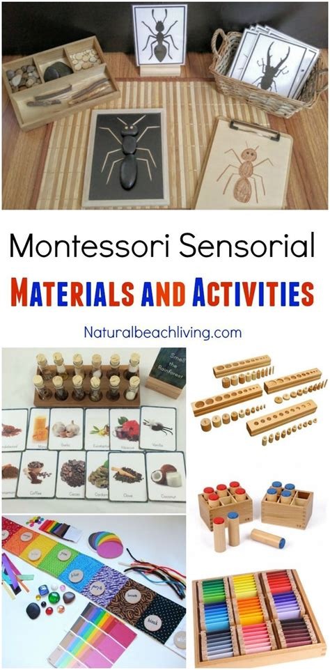 best 25 montessori materials ideas on 693 | a37cfe06b35d651e924f7f02edcb6891