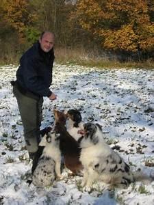 Hund In Mietwohnung Trotz Verbot : die hunde ~ Lizthompson.info Haus und Dekorationen