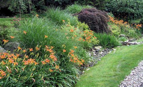 ornamental plantings archives clc landscape design