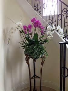 tile bathroom design pothos plant bathroom eclectic with shower curtain plants
