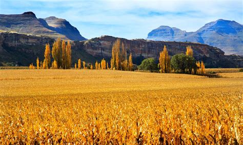 Clarens | Accommodation and tourism in Clarens