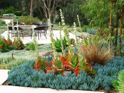 succulent landscape design 18 succulent garden designs ideas design trends