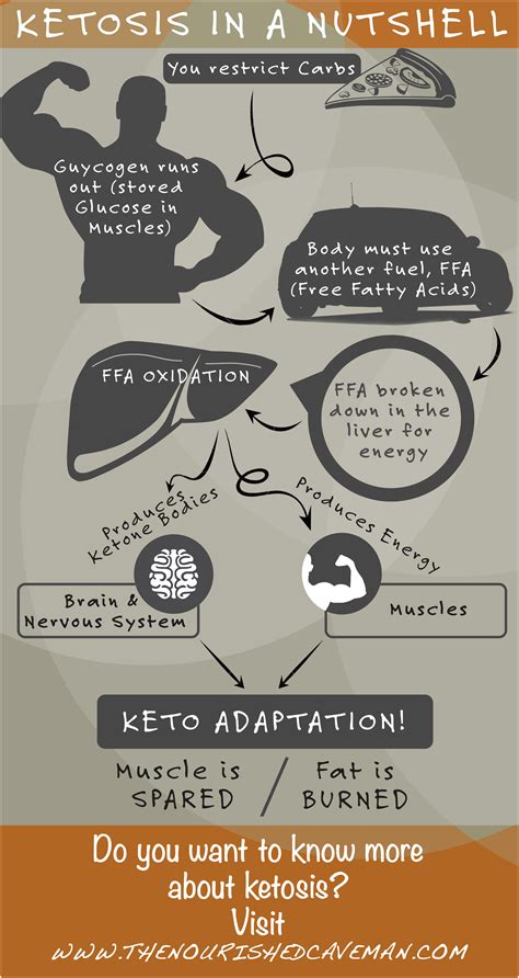 Nutritional Ketosis Vs Ketoacidosis  Ketogenicdietpdfcom. Chart Hd Signs Of Stroke. Immigration Signs. Salt Signs. Chicken Pox Signs. Corporate Campus Signs Of Stroke. Acute Kidney Signs. Diabetes Mellitus Signs. Sorting Signs