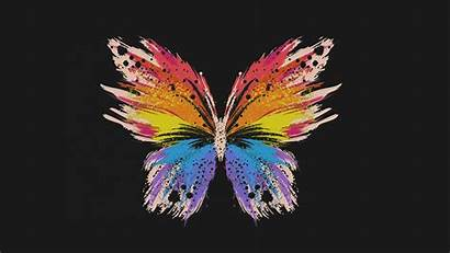 Butterfly Dark Minimal Illust Wallpapers Desktop 4k