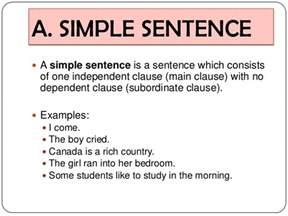 12 syntax sentences
