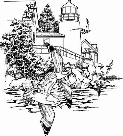 Coloring Pages Adult Sheets Scenery Landscape Adults