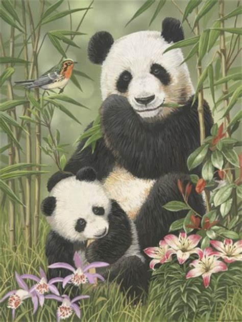 panda paradise fine art print  william vanderdasson