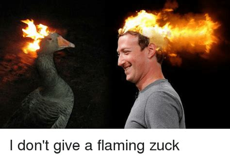 Zuck Memes - i don t give a flaming zuck dank meme on sizzle