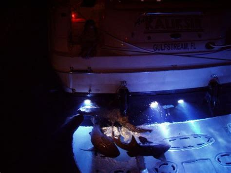 Underwater Lights For Boats by Blinglights Bl9l Naval Bronze Led Water Light Boats