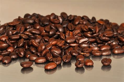 What's The Difference Between Arabica And Robusta Coffee Spanish Coffee Bar Drink Nescafe Machine Bd Cost Kerala Home Parts Brewing Vector Vending Mumbai