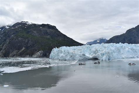 glacier bay national park preserve