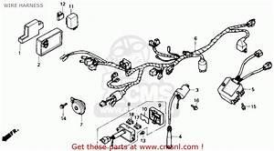 Wiring Diagram 1988 Honda Nx