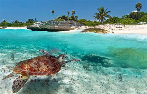 costa maya mexico armenian heritage cruise