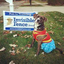 invisible fence brand of dayton pet services 145 w With best rated invisible dog fence