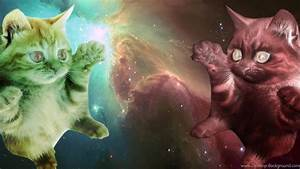 Wallpapers Astronaut Cat With Laser (page 2) Pics About ...