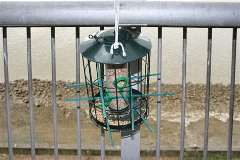 bird feeders for small birds only bird cages