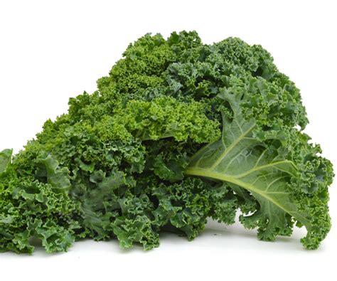 cuisiner du chou chou kale où acheter du chou kale chou kale infos