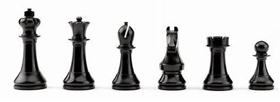 Chess Official Rook Queen Bishop Pawn Knight