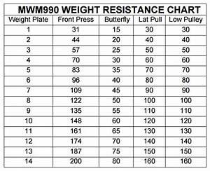 Marcy Home Gym Weight Chart  U2013 Blog Dandk