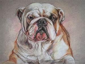 De 2960 bästa The Art of Puppy Painting-bilderna på Pinterest