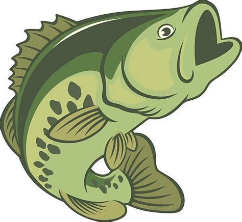 Bass Clipart Royalty Free Largemouth Bass Clip Vector Images