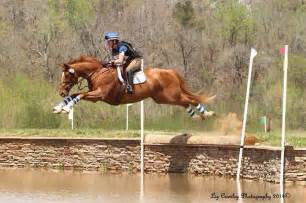 Equestrian: Cross Country | Horse Love | Pinterest