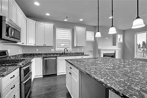 Black white and gray kitchen ideas kitchen and decor for Kitchen cabinet trends 2018 combined with bronze bird wall art