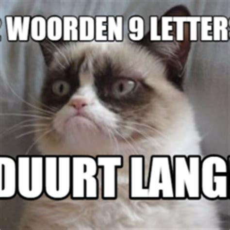 grumpy cat hilarious cat pictures  captions
