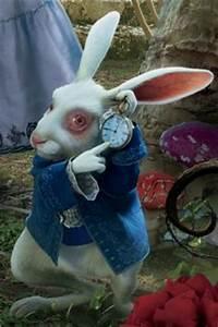 Hase Alice Im Wunderland Kostüm : mareikes b cher blogtour alice im wunderland das wei e kaninchen ~ Frokenaadalensverden.com Haus und Dekorationen