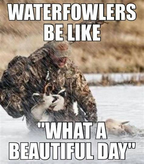 Duck Hunting Meme - ducks hunting and duck hunting on pinterest