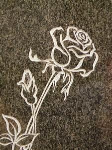 Free Photo  Rose  Tombstone  Spiny  Plant - Free Image On Pixabay