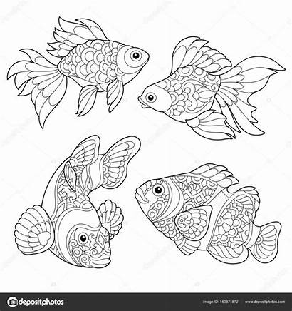 Fish Coloring Zentangle Adult Pages Goldfish Stylized