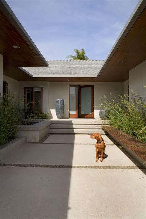entry courtyard contemporary  covered hand front doors