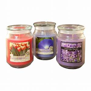 Lumabase 18 oz. Scented Candle Collection Floral (3-Count ...