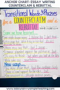 The Best Anchor Charts Dianna Radcliff Writing Anchor