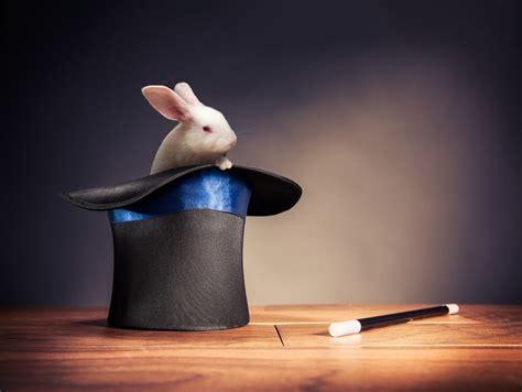 welk konijn tovert  uit haar brexit hoed hortipoint
