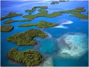 Mangrove Belize Islands