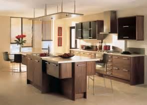 kitchen renovation ideas modern kitchen designs becoming an established fashion 39 the uk construction