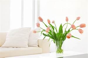 Tulpen In Vase : tulpen l nger halten so bleiben sie frisch ~ Orissabook.com Haus und Dekorationen