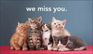 Christian Miss You Friends Cards