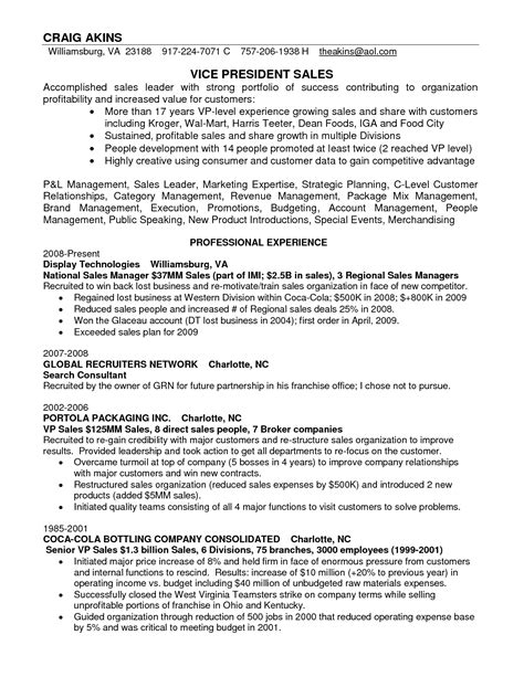 top level executive resume sle 28 images sales account