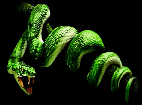 Animated Snake Wallpaper - artdecadence can you feel it crawlin up you arm