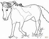 Mare Coloring Horse Miniature Horses Outline Mini Designlooter Pony 85kb 964px 1200 Template sketch template